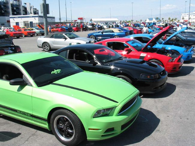 Mustangs 50th Anniversary